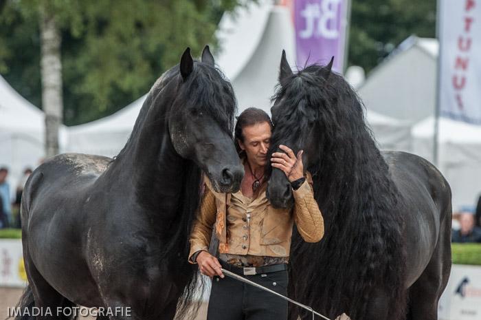 Pignon op Horse Event