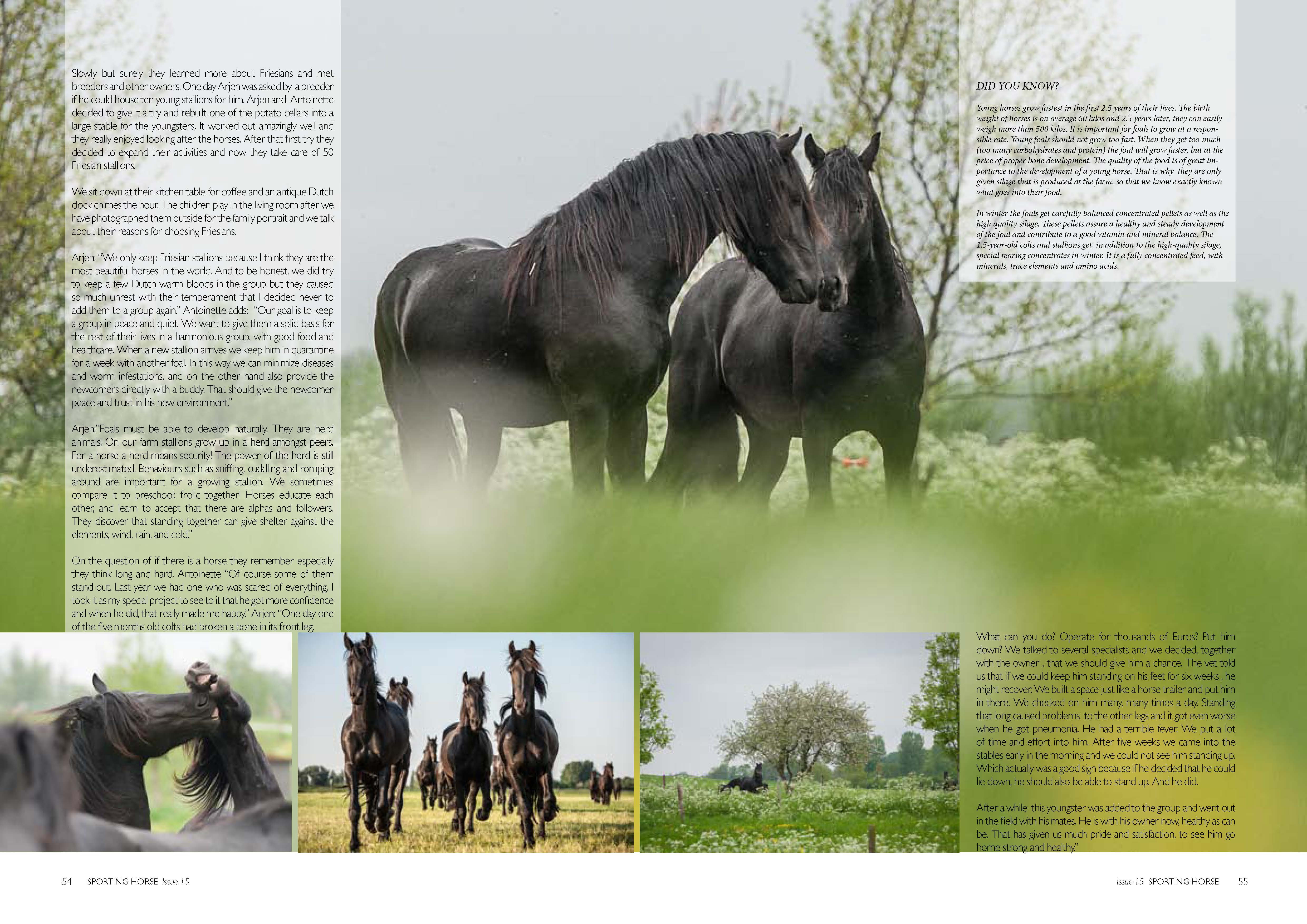 Friesians_Page_2