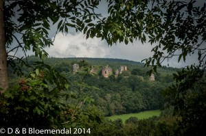 Chatel-Montagne 2014-24