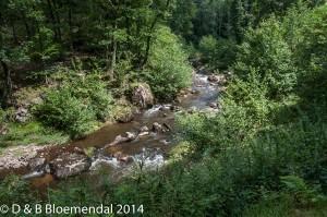 Chatel-Montagne 2014-9